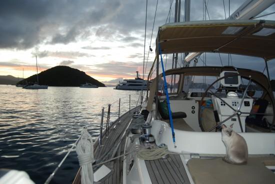 Nicho-San on deck